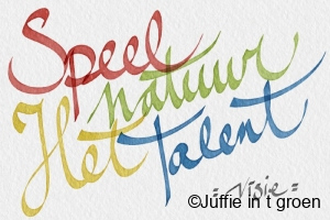 foto-visie-talent